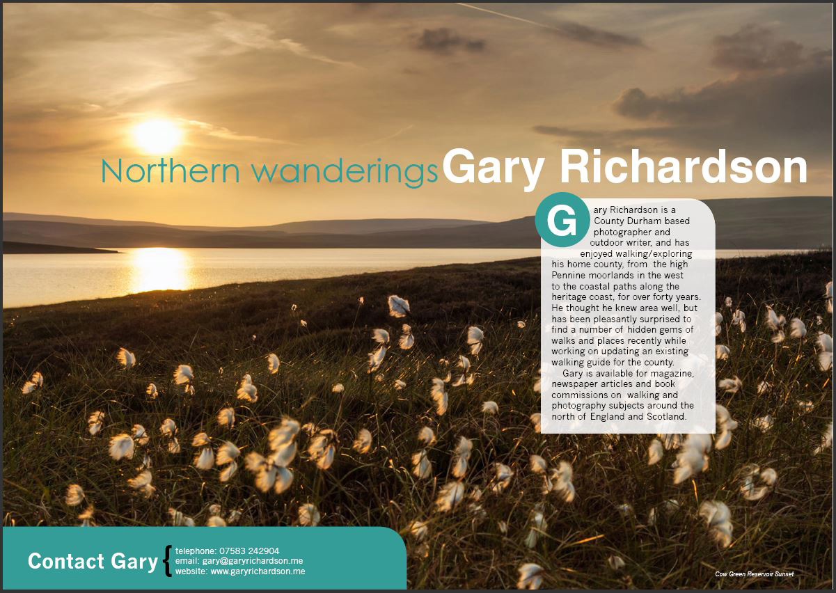 An essay on gary kamiyas article